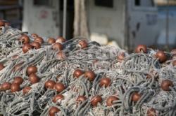 Уничтожено 6 км. рыболовных сетей