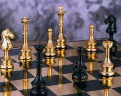 Пловец - четвертый в России, шахматисты выиграли четыре медали