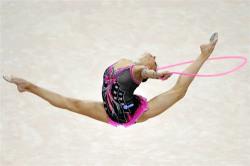 Гимнасты завоевали 7 медалей, мастера Сито-рю - 8