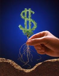 Расширяются возможности залогов в сельском хозяйстве