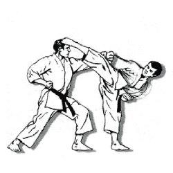 У каратистов - две медали, спортсмен и тренер стали заслуженными