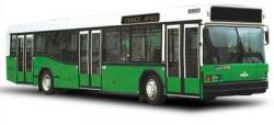 """...предприятия  """"Минсктранс """" 124 автобуса, из них 79 городских низкопольных автобусов МАЗ 103, 40 городских сочлененных."""