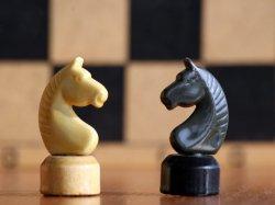Единоборцы - третьи в Ульяновске, шахматистки выиграли первые партии ЧЕ