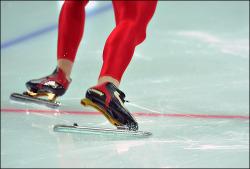 Конькобежец выиграл две медали, борцы - 11