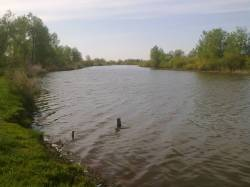 Гражданин заплатит штраф за изменение русла реки