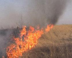 Сгорели два поля