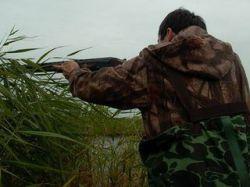 Ежегодно в области фиксируется более 200 нарушений на охоте