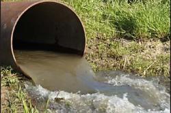 Загрязнение реки названо критическим