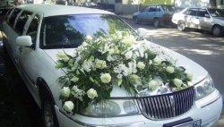 Полиция разыскивает свадебный кортеж, нарушавший ПДД