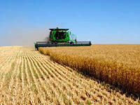 На аграрные программы за год планируется потратить более 1 млрд