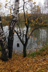 На развитие водного хозяйства области федералы потратят 51 млн рублей