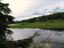 Планируется расчистить водохранилище и реку