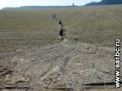 """Фермер наказан за """"порчу"""" 37 гектаров земли"""
