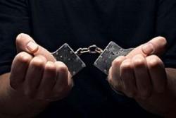 Задержан предполагаемый руководитель ОПГ, обманувший тысячу человек