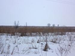 Депутат Кузнецов: в области не обрабатывается более 600 тыс. га пашни