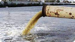 Фигуранты дела о сбросе отходов в оз. Банное не признают свою вину