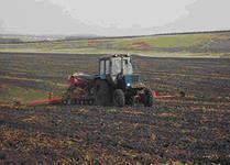 В области засеян 1 млн гектаров ранних яровых культур