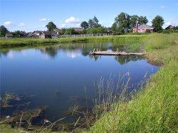 Сдача в аренду земель с прудами признана незаконной