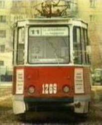 Упавшая ветка остановила трамваи трех маршрутов