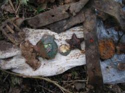 В Беларуси перезахоронят останки солдат ВОВ - уроженцев Саратовской области