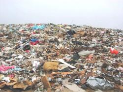 Собственников мусора хотят обязать убирать его или заключать договоры
