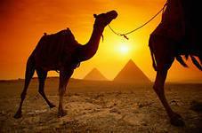 """Представитель турфирмы о Египте: """"Нечего вам там делать"""""""