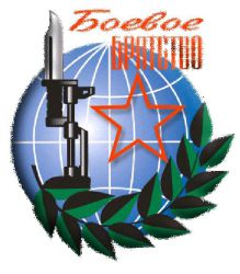 """""""Боевое братство"""" требует выдворения националистов из Пугачева"""