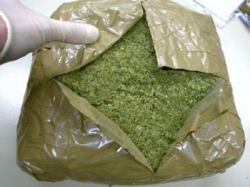 Пятеро наркоторговцев получили 52 года и 9 мес. колонии строгого режима