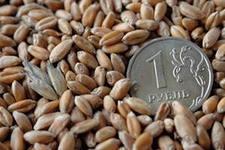 Пришел второй федеральный транш для поддержки сельхозпроизводителей