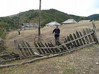 Количество сельских поселений области сократилось с 357 до 320
