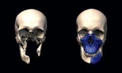 Американское издательство опубликовало работу саратовского ученого по 3D реконструкции