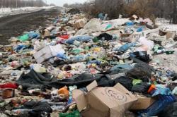 Очищено от мусора меньше трети территории незаконных свалок