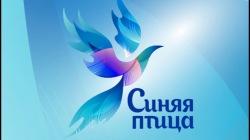 Объявлен отбор на участие в третьем сезоне Синей птицы