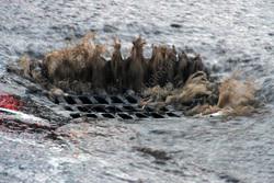 В новых микрорайонах отсутствуют системы водоотведения