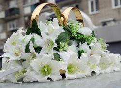 Молодоженов просят перенести даты ближайших свадеб
