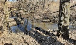 Женщина нашла пропавшего мужа мертвым в ручье