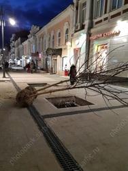 Времена. Теракт в Петербургском метро, в Саратове высадили 400 тыс. деревьев