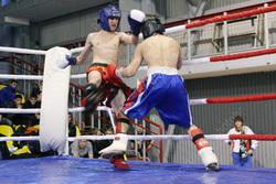 Саратовские кикбоксеры стали чемпионами России