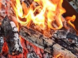 К пожару в нацпарке Хвалынский мог привести костер, возбуждено дело