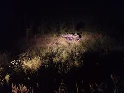 Водитель без прав опрокинул машину в кювет, пострадал подросток