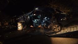 На трассе ВАЗ врезался в дерево, водитель погиб