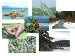 Министерство природных ресурсов и охраны окружающей среды Республики...