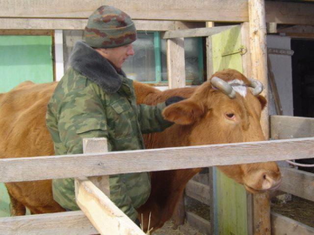 слушала Работа в сельском хозяйстве с предоставлением жилья в россии перед