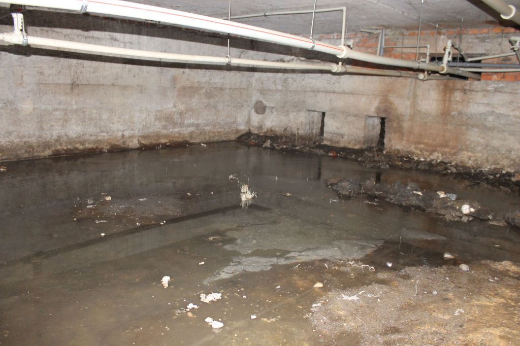 Жители дома в Дубне пожаловались на зловонное болото в подвале