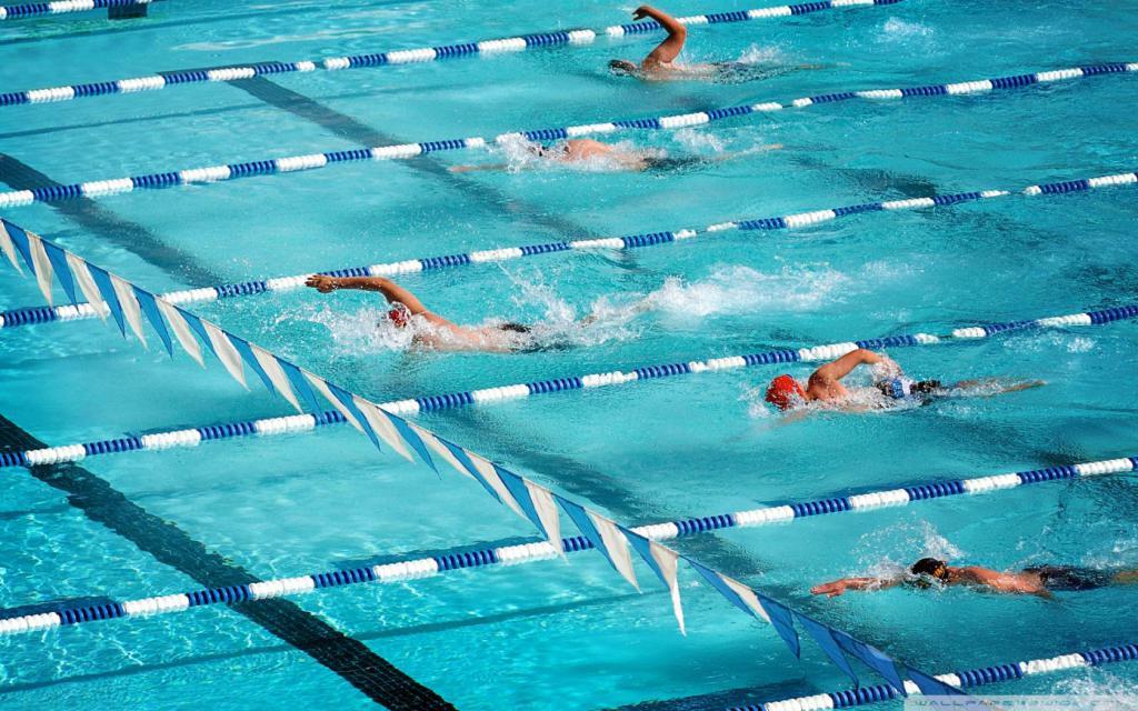 Стрелки завоевали 6 медалей Кубка мира пловцы- 3 на чемпионате Европы