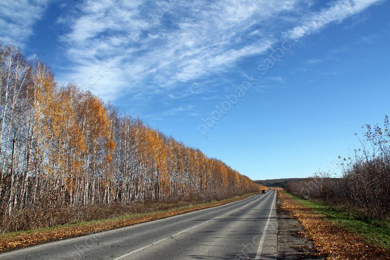 Вновь объявлен аукцион настроительство дороги каэропорту вСабуровке