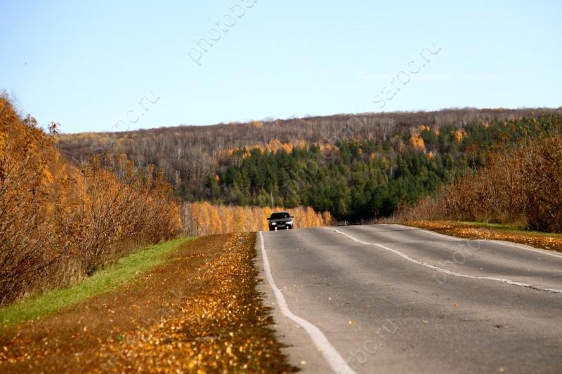 ВСаратовской области сохранится дождливая ипрохладная погода