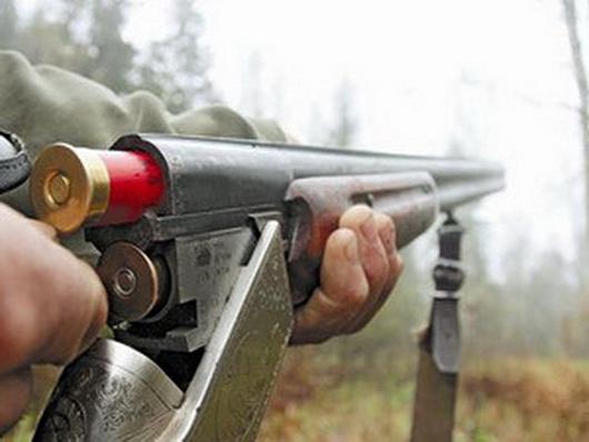 ВСаратовской области браконьеры напали наегеря