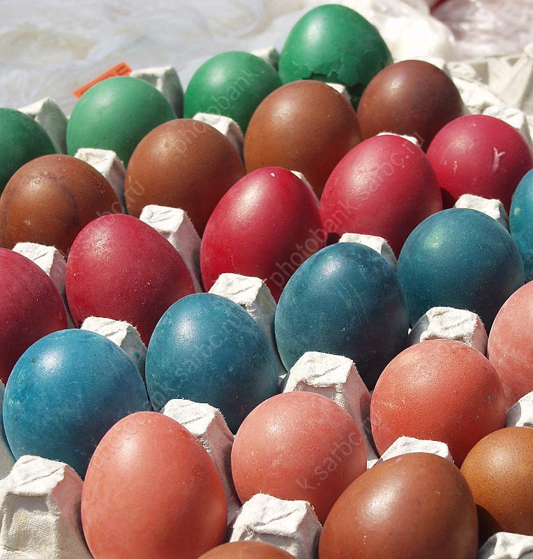 Белые икоричневые: специалисты узнали, как цвет скорлупы влияет накачество яиц