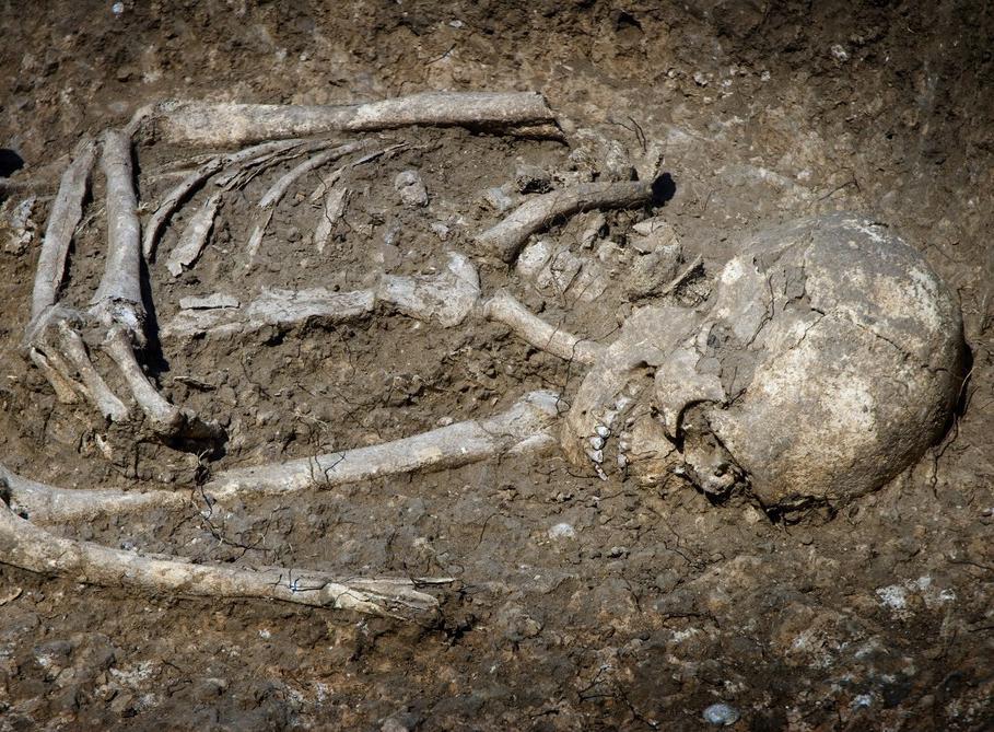 ВСаратове всливном коллекторе найден скелет